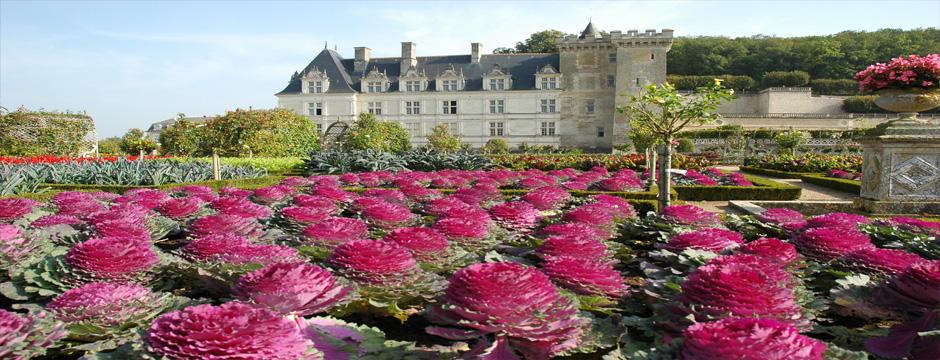 Vale do Loire e Borgonha - Beaune - 6 noites
