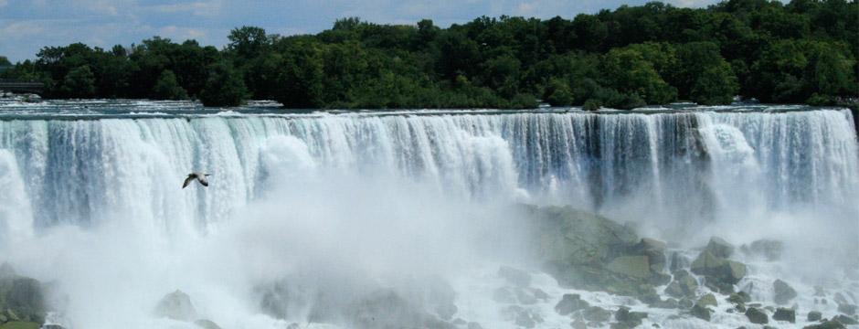 Fantasias do Niagara com New York - sem aéreo