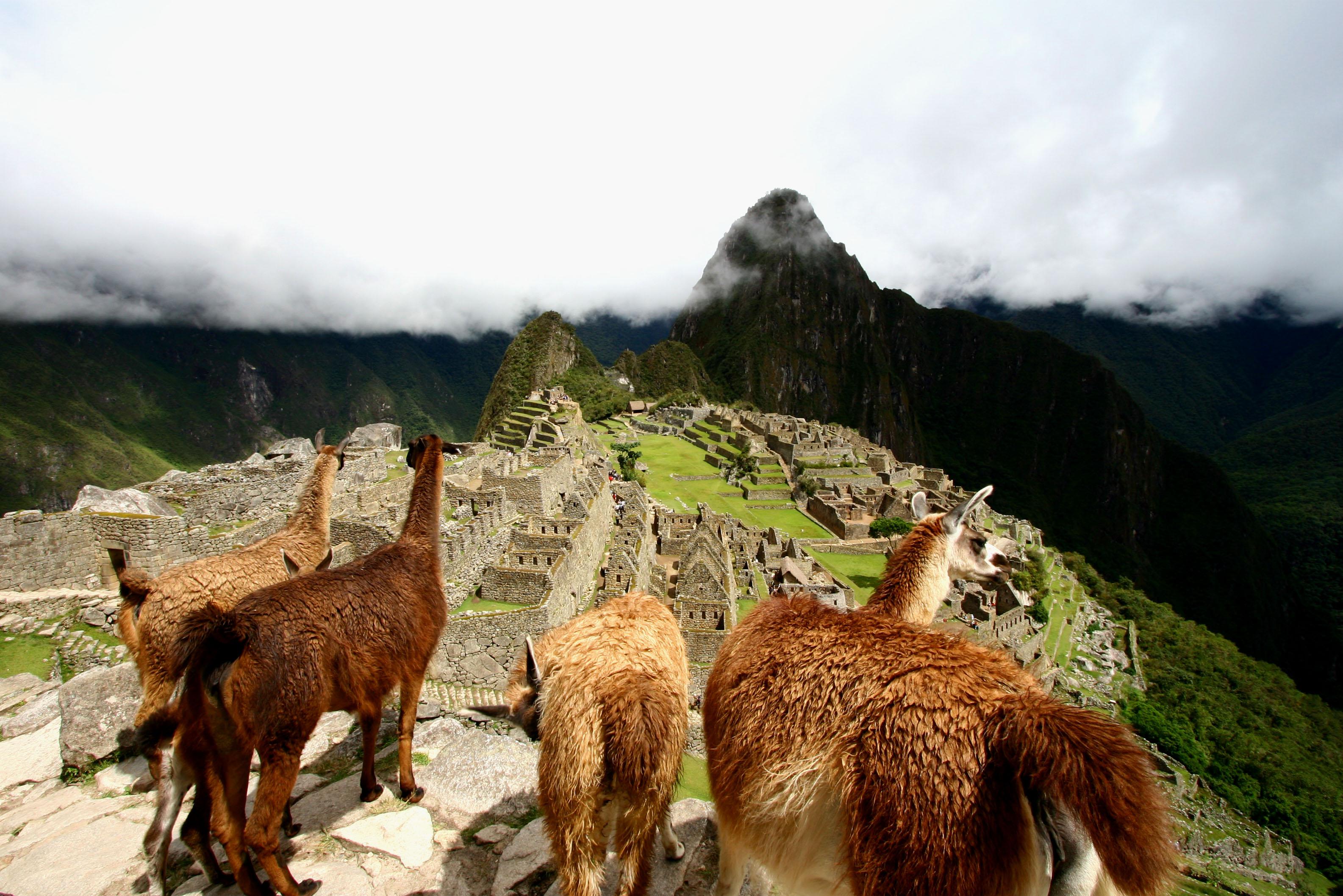 Inca Sabores 3