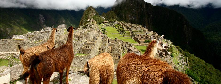 Mistura Festival Gastronômico com Machu Picchu