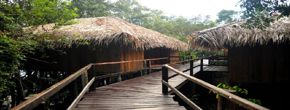 Trek_Package 3521 - bangalo vista floresta
