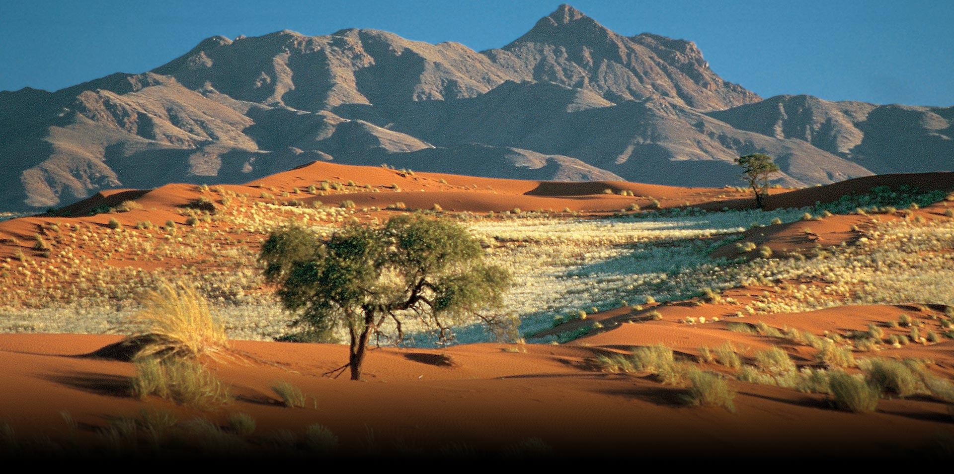 Fotos Namíbia