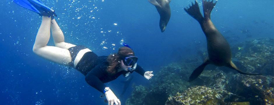 Galápagos Ilhas do Norte - Navio Santa Cruz II