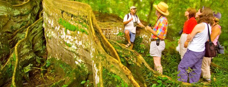 Costa Rica Natural - sem aéreo